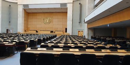 International Organisations (Geneva)