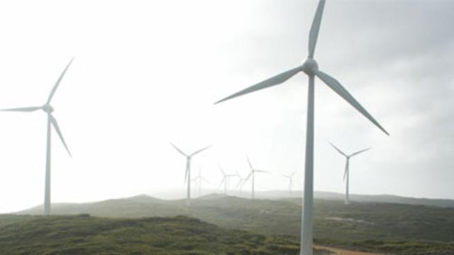 Image shows a wind farm in Albany WA