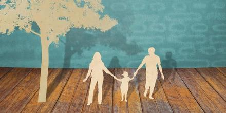 Expert Panel on ALRC Report 'Family Law for the Future'