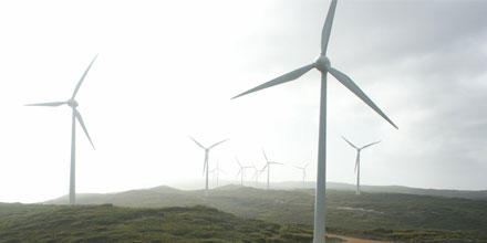 Image shows a wind farm in Albany WA