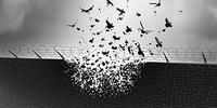 Absrtact picture of birds flying out of a prison wall
