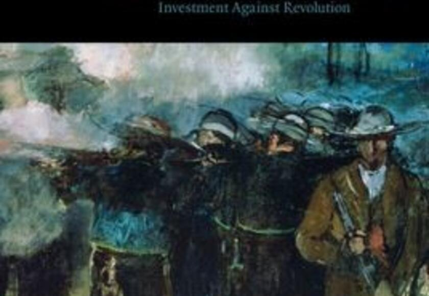 Virtual Book Talk: State Responsibility and Rebels: The History and Legacy of Protecting Investment Against Revolution
